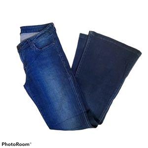 Hudson Ferris dark wash flare jeans size 28